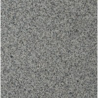Bianco Catalina 12X12 Polished Granite Tile