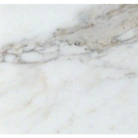 Calacatta Gold 12X12 Honed Marble Tile