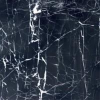China Black Withvein 18 X 18 Marble Tile