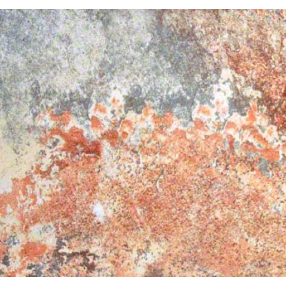Rio Rustic 12X24 Matte