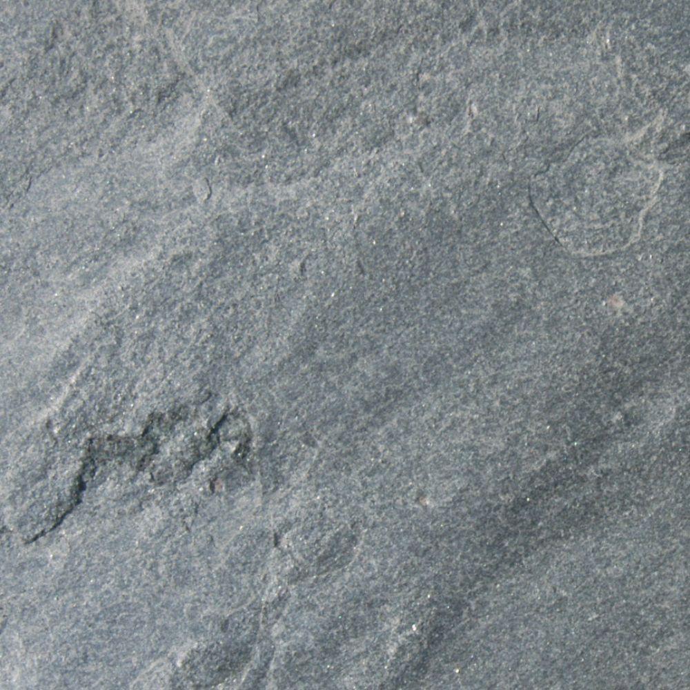 Ostrich Grey 24X24 Gauged