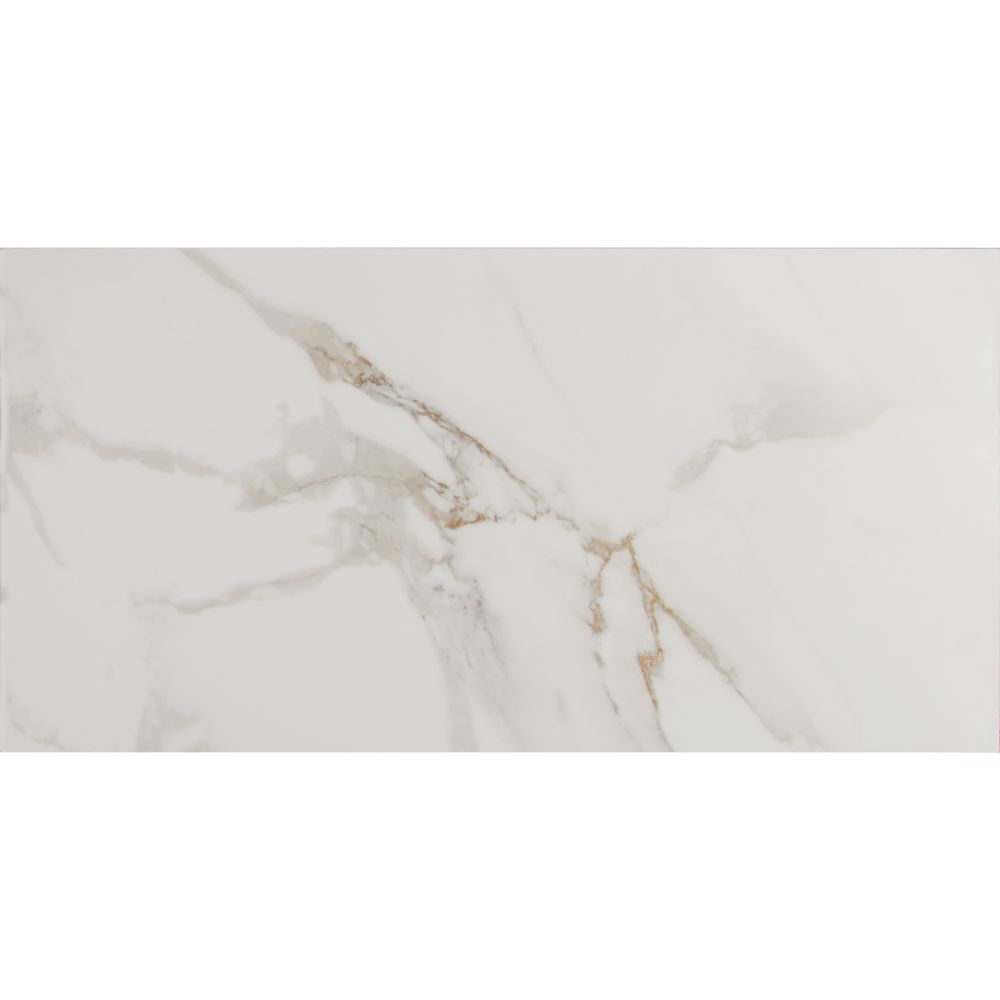 MSI Pietra Carrara 12X24 Polished Porcelain Tile