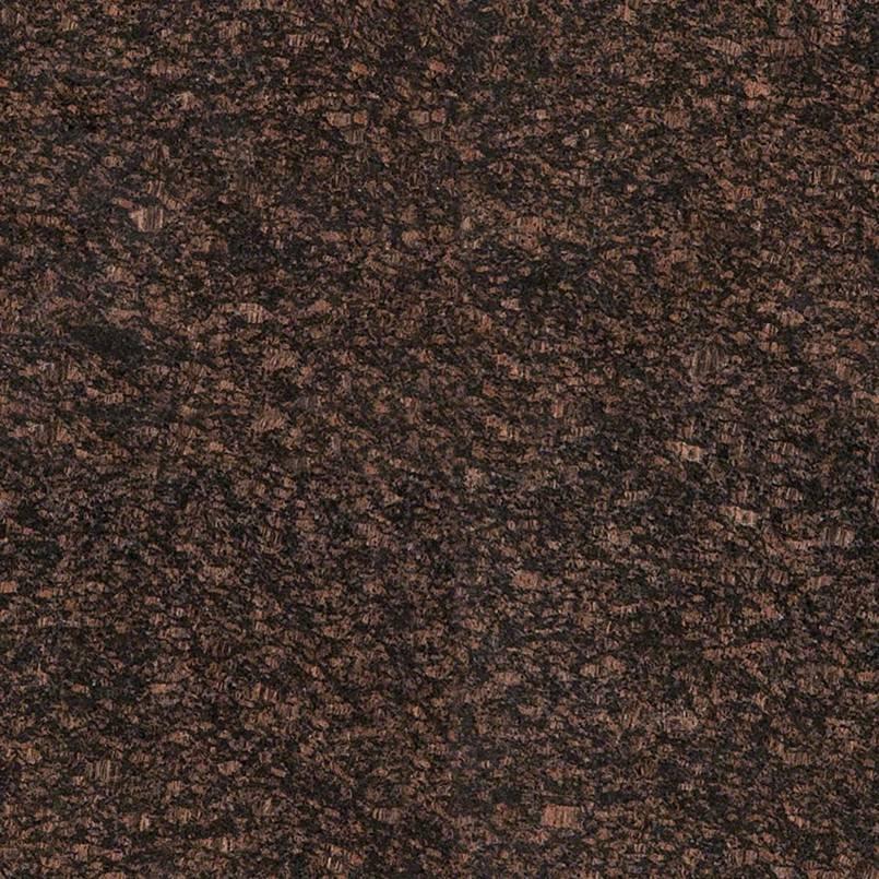 Tan Brown 18X18 Polished