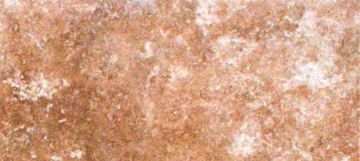 Travertino Walnut 3x12 Matte Bullnose Tile