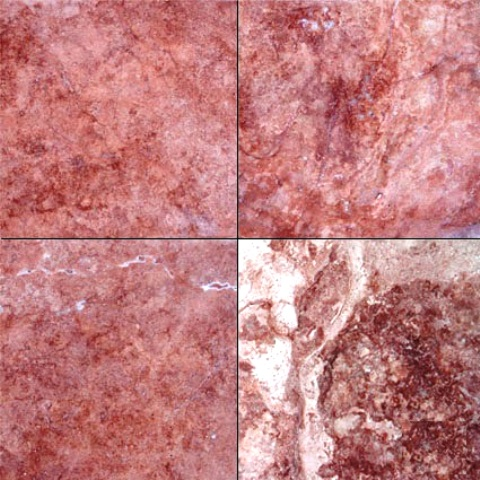 Tuscany Rouge 18X18 Honed/Filled