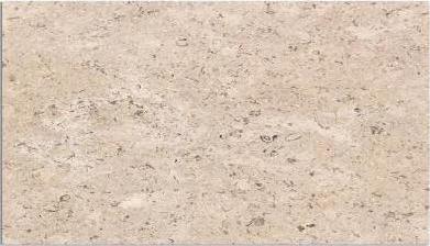 Sinai Pearl 12x24 Polished Marble Til